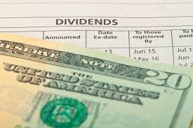 A Dividend Index Fund for the Long-term?