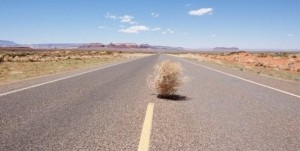Tumbleweed at 11 Wall Street?